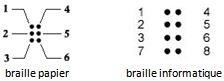 Cellules braille